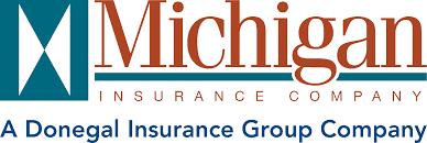 Michigan Ins Group